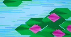 Interpretazioni geometriche di Manfredi Saccani